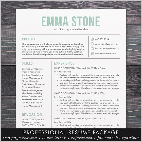Free Modern Resume Templates For Mac