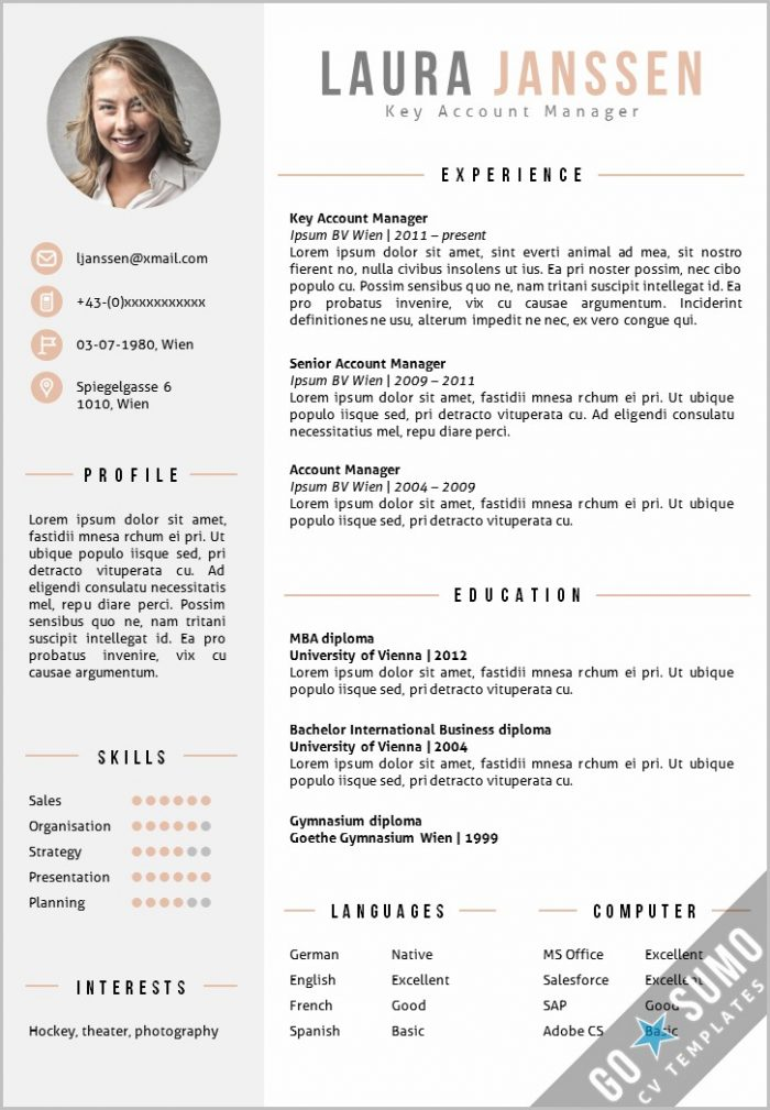 Resume Template Word Elegant