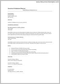 Best Resume Template For Mac