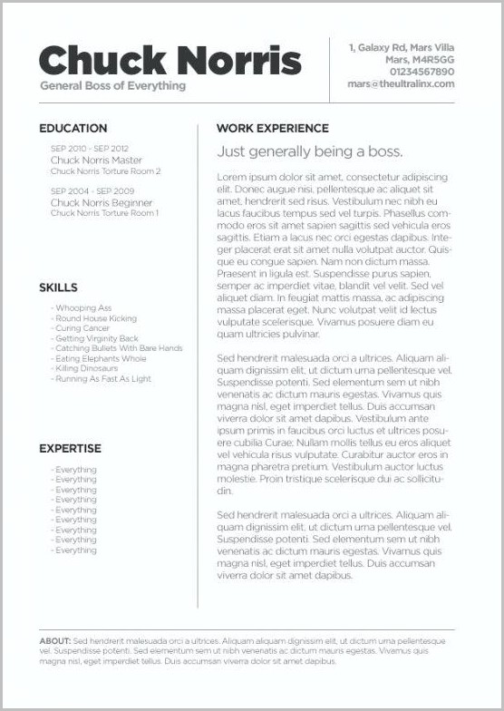 Creative Resume Templates For Mac Free