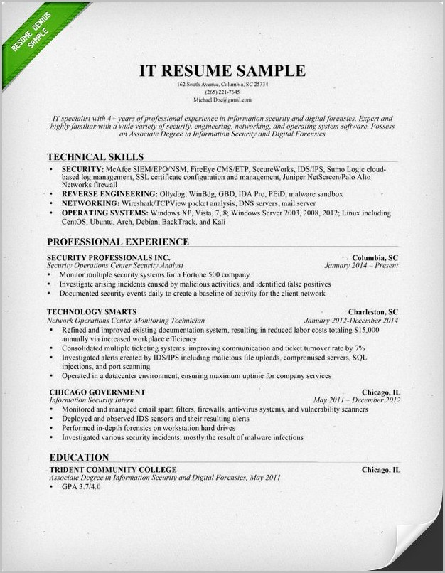 Example Of Resume Professional Skills