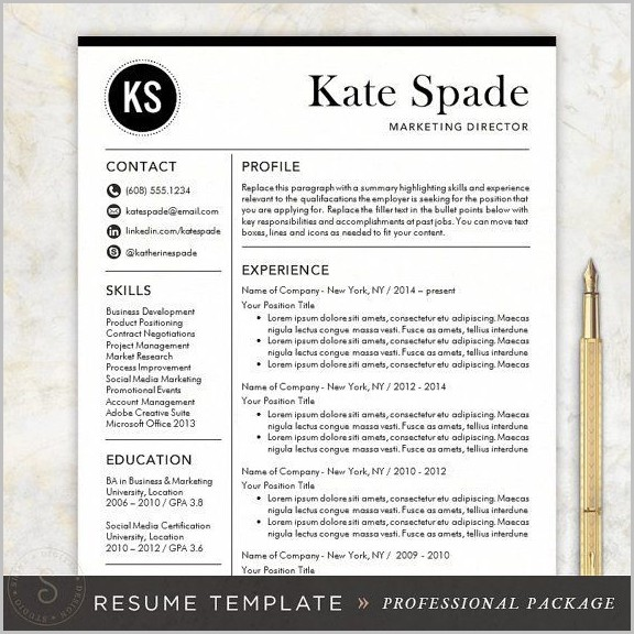 Modern Resume Template For Mac