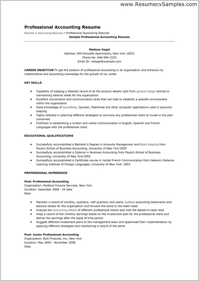 Sample Of Professional Resume For Accountant