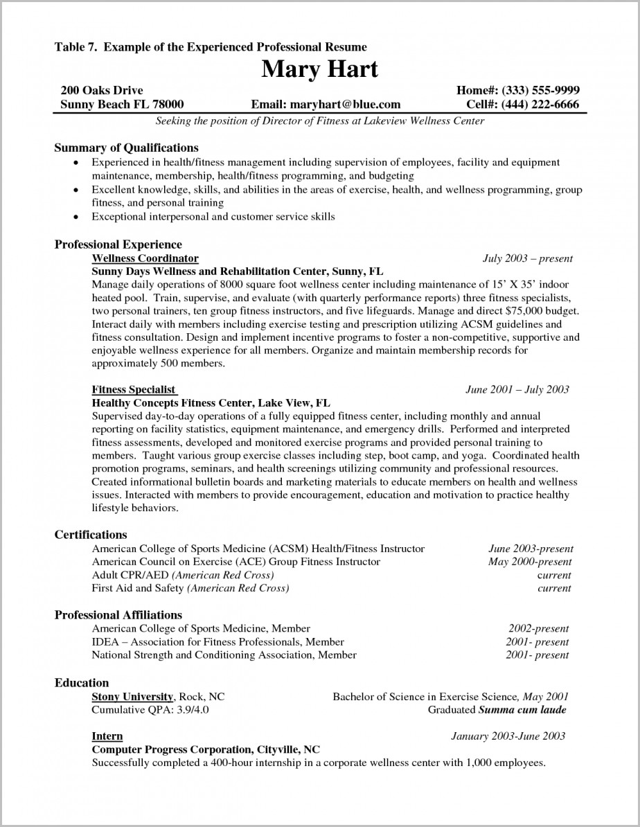 Sample Of Professional Resume With Experience