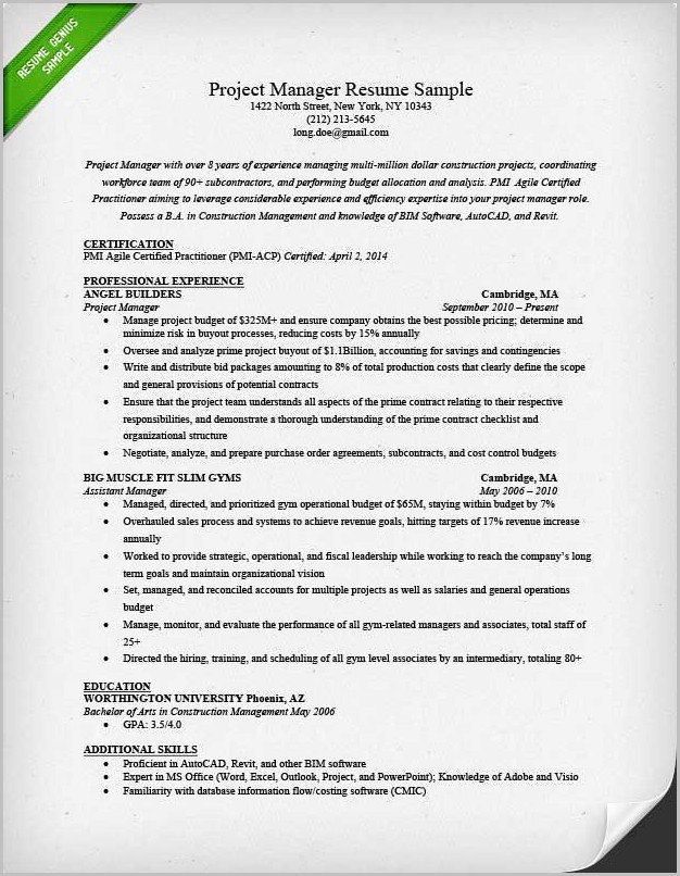 Sample Professional Resume Project Manager
