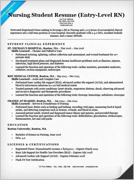 Resume Examples For Entry Level Nurses