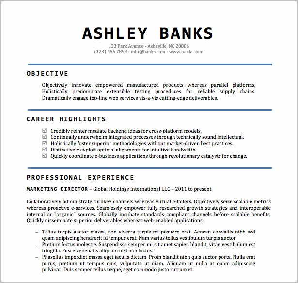 Word Doc Template For Resume