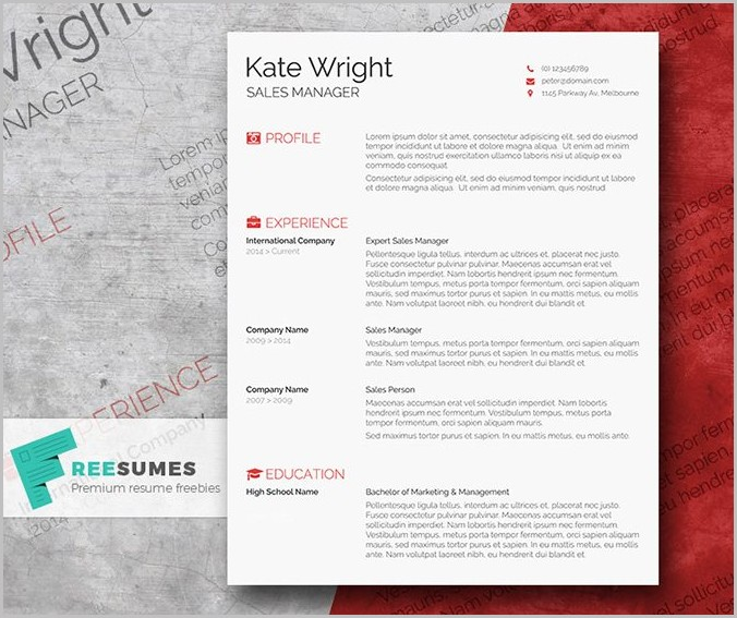 Word Template Resume Design