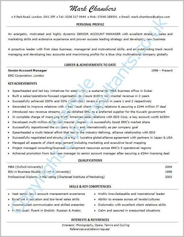 Professional Cv Template Example