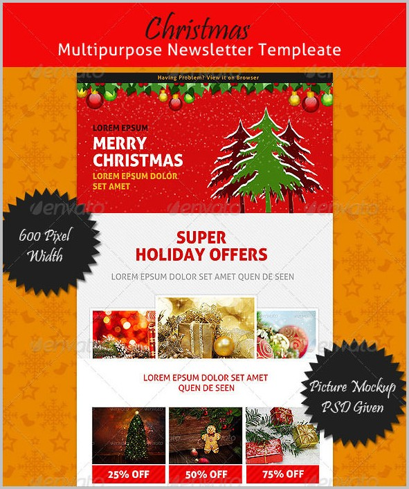 Christmas Newsletter Template Indesign
