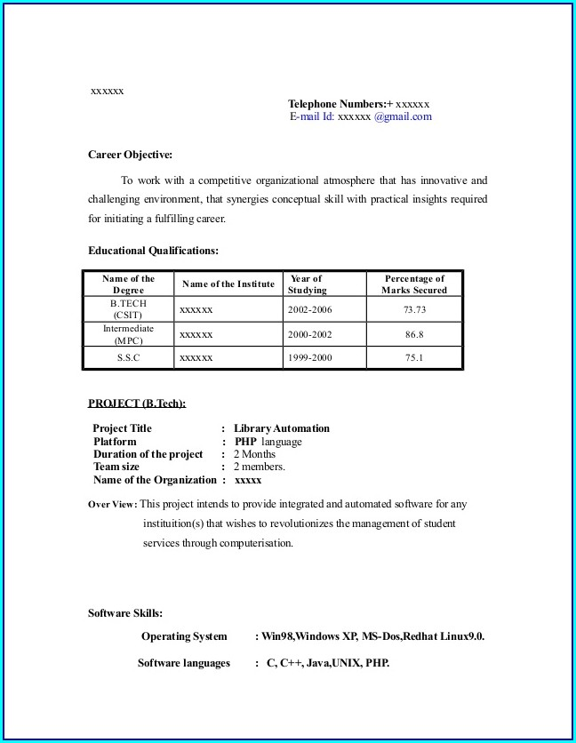 Basic Resume Template Examples