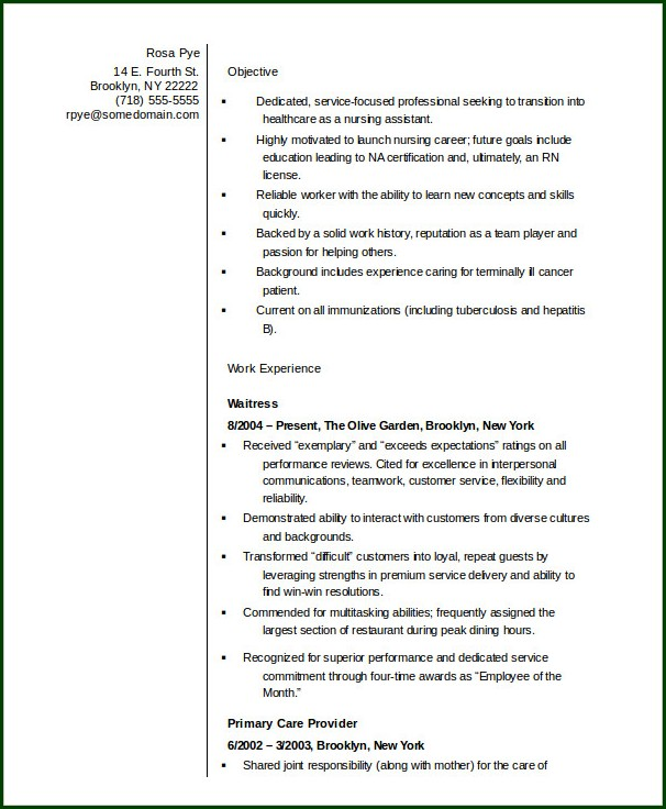 Nursing Resume Template Word