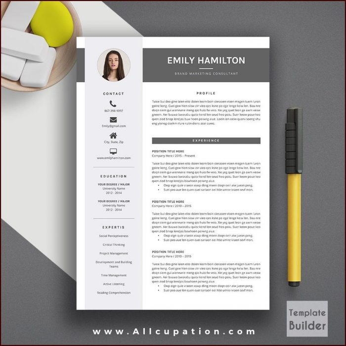 Download Creative Resume Templates Word