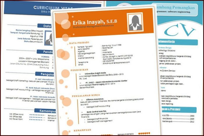 Download Template Resume Menarik