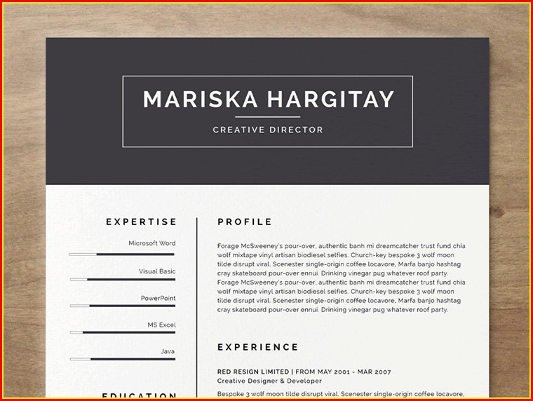 Free Creative Resume Templates Microsoft Word With Photo