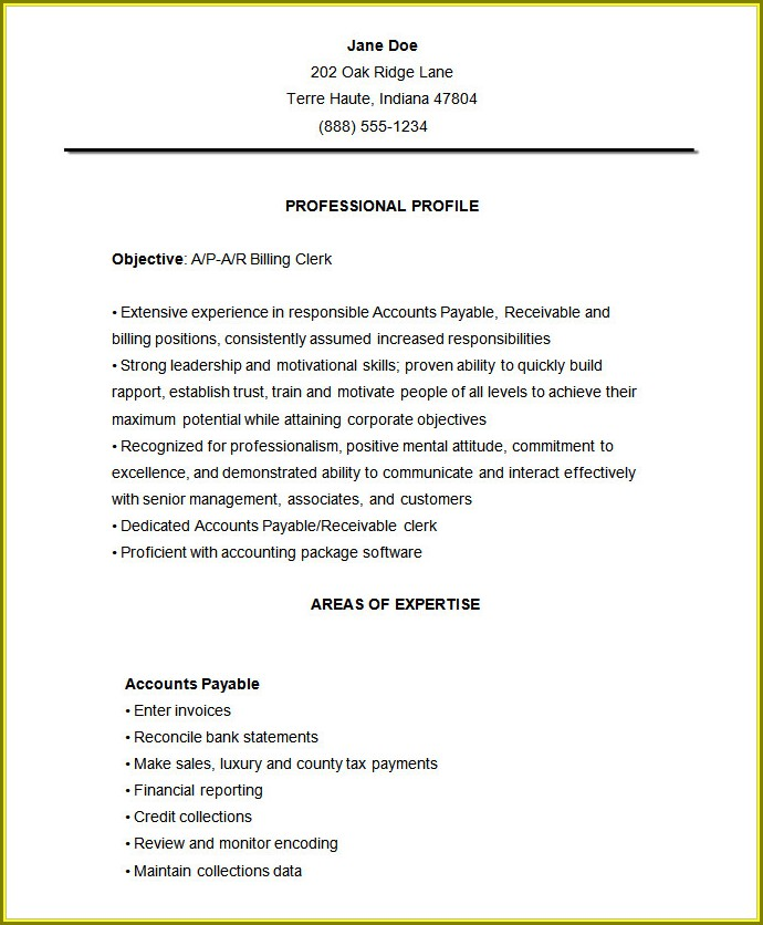 Curriculum Vitae Format Accountant Free Download