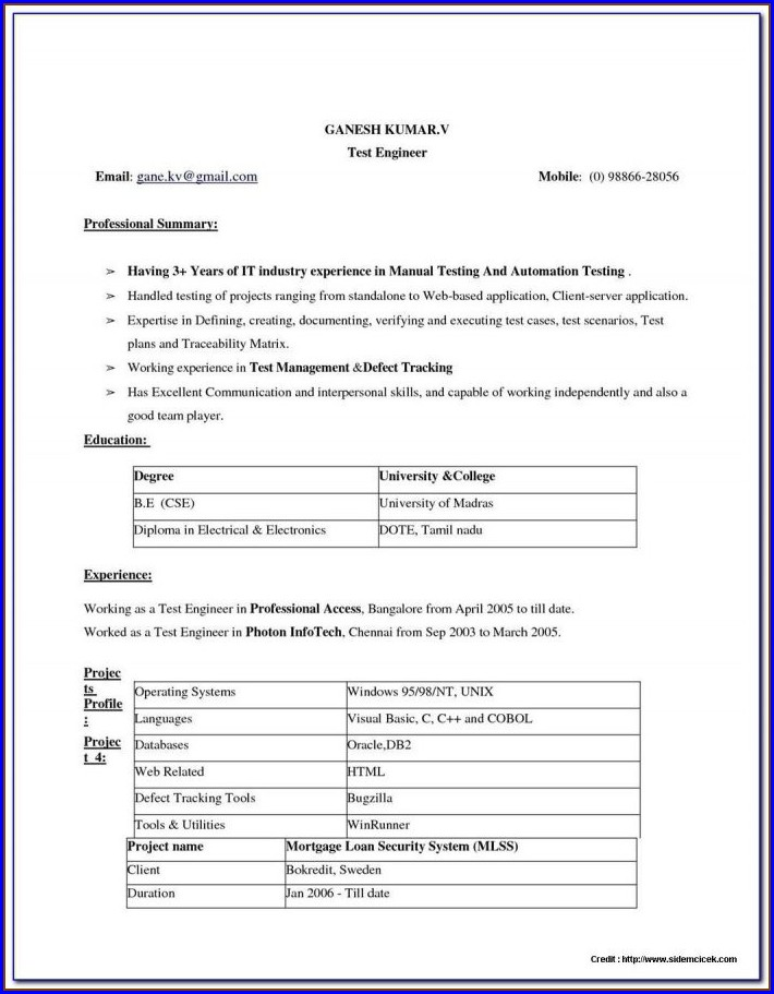 Downloadable Free Printable Resume Examples