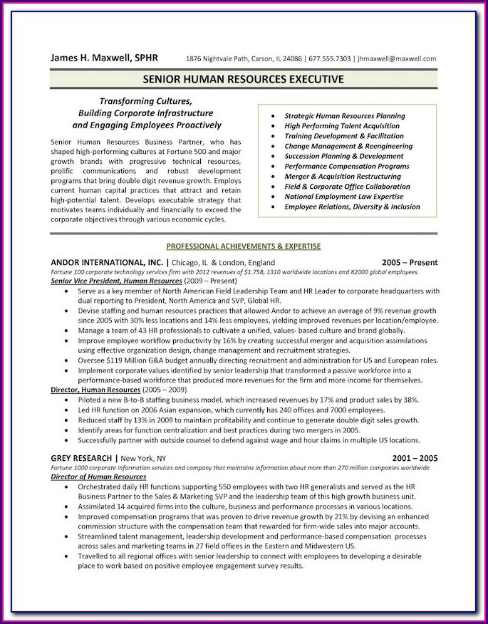 Executive Resume Formats And Examples