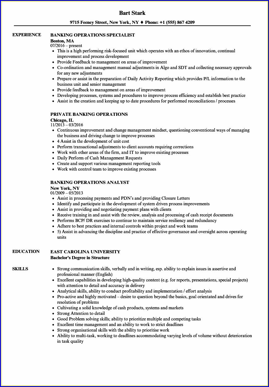 Experienced Sample Resume For Banking Sector