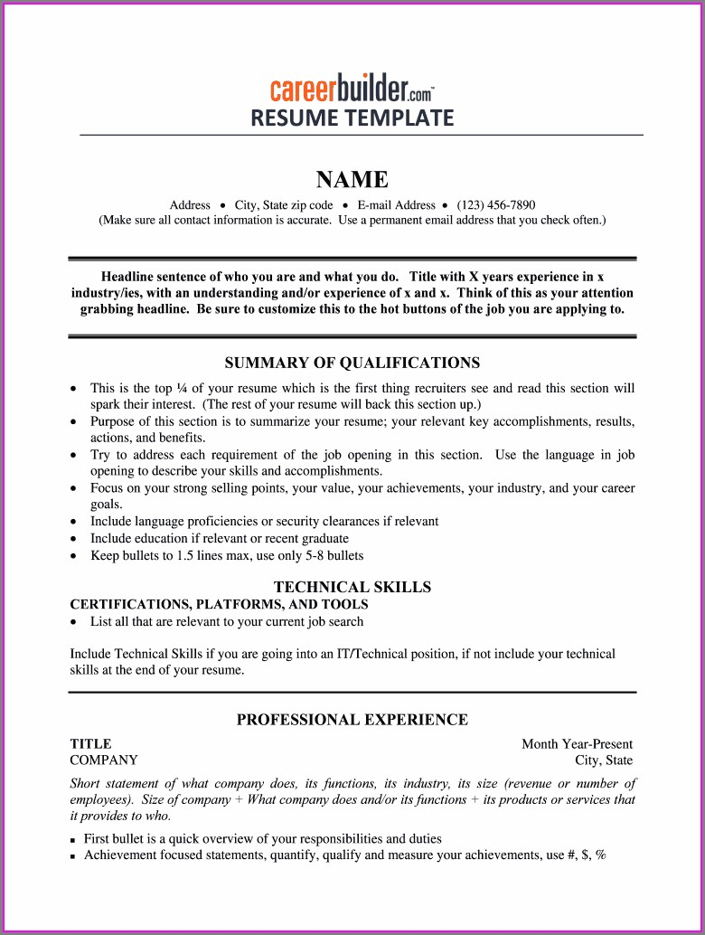 Fill In The Blank Resume Form