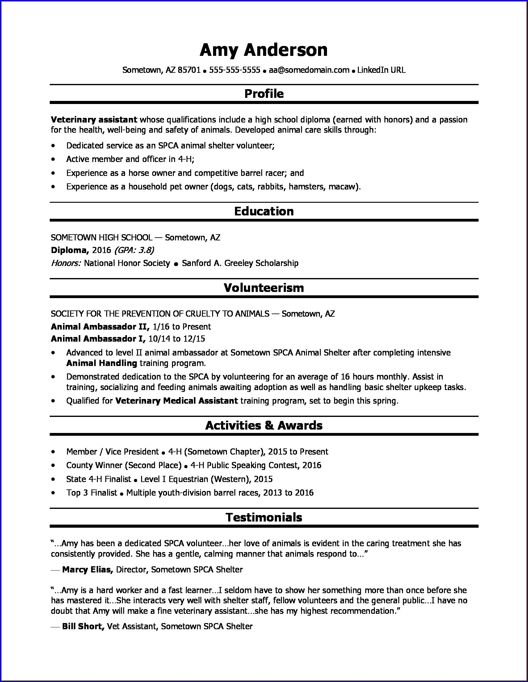 High Schooler High School Resume Templates