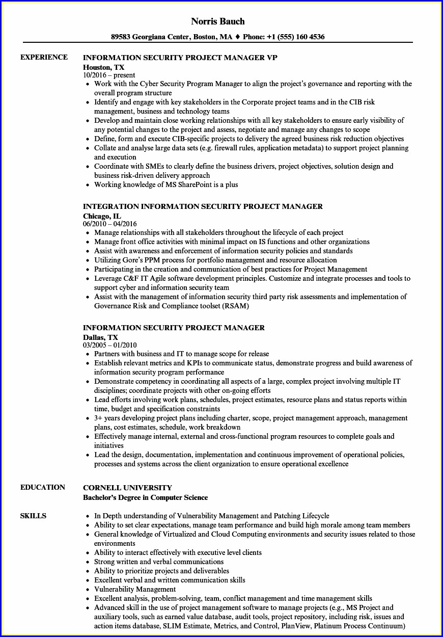 Information Security Cyber Security Resume Sample