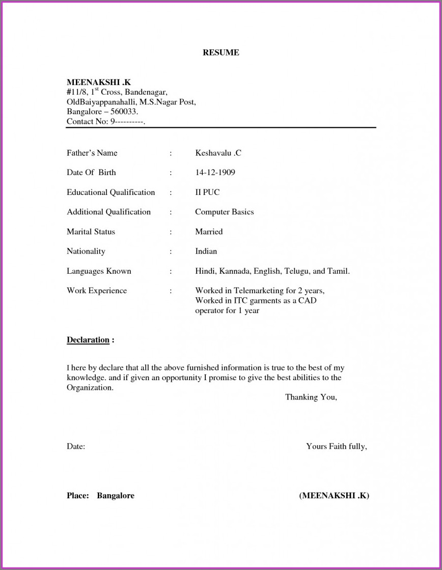 Normal Resume Format Word File Free Download