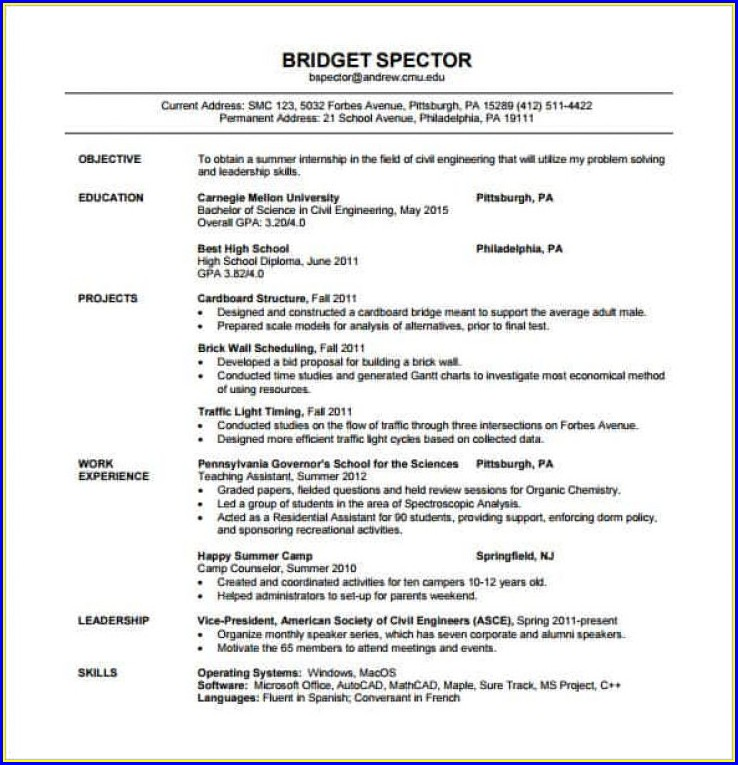 Mobile Testing Engineer Resume Uncategorized Resume