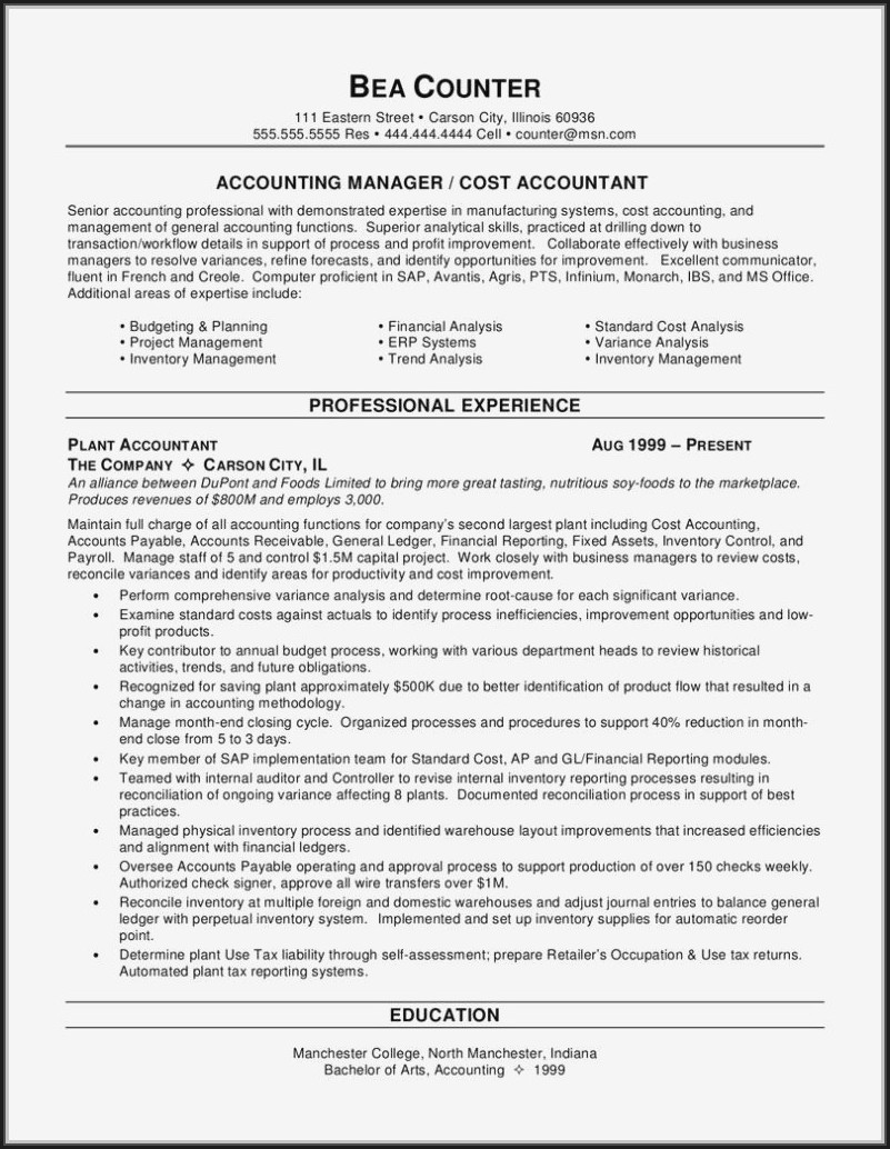 Professional Cv Sample For Accountant