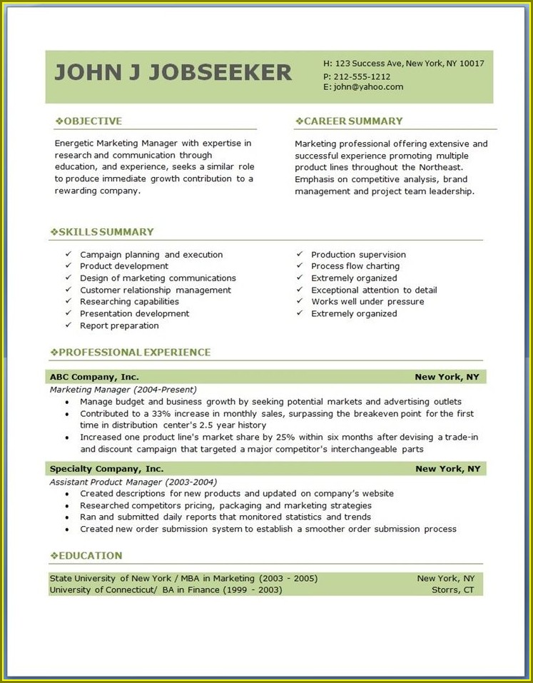 Professional Downloadable Sample Free Resume Template