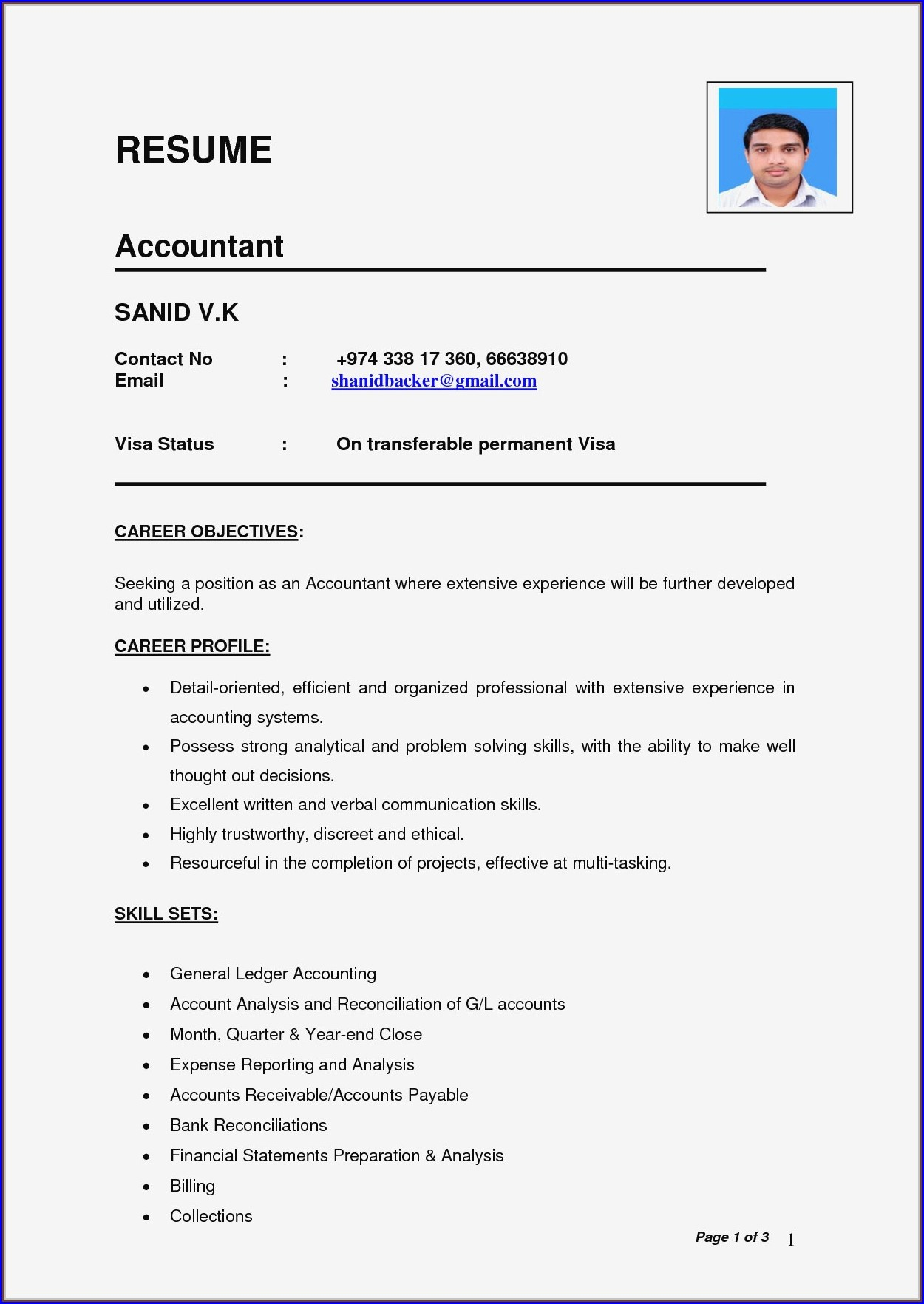 Professional Resume For Accountants
