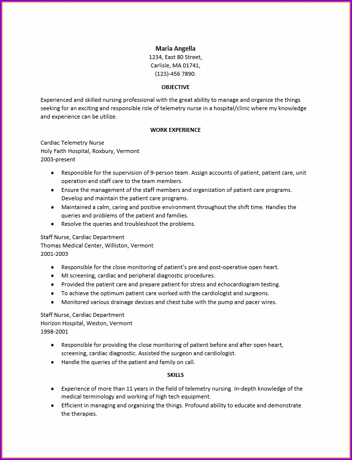 Professional Resume Format For Nurses