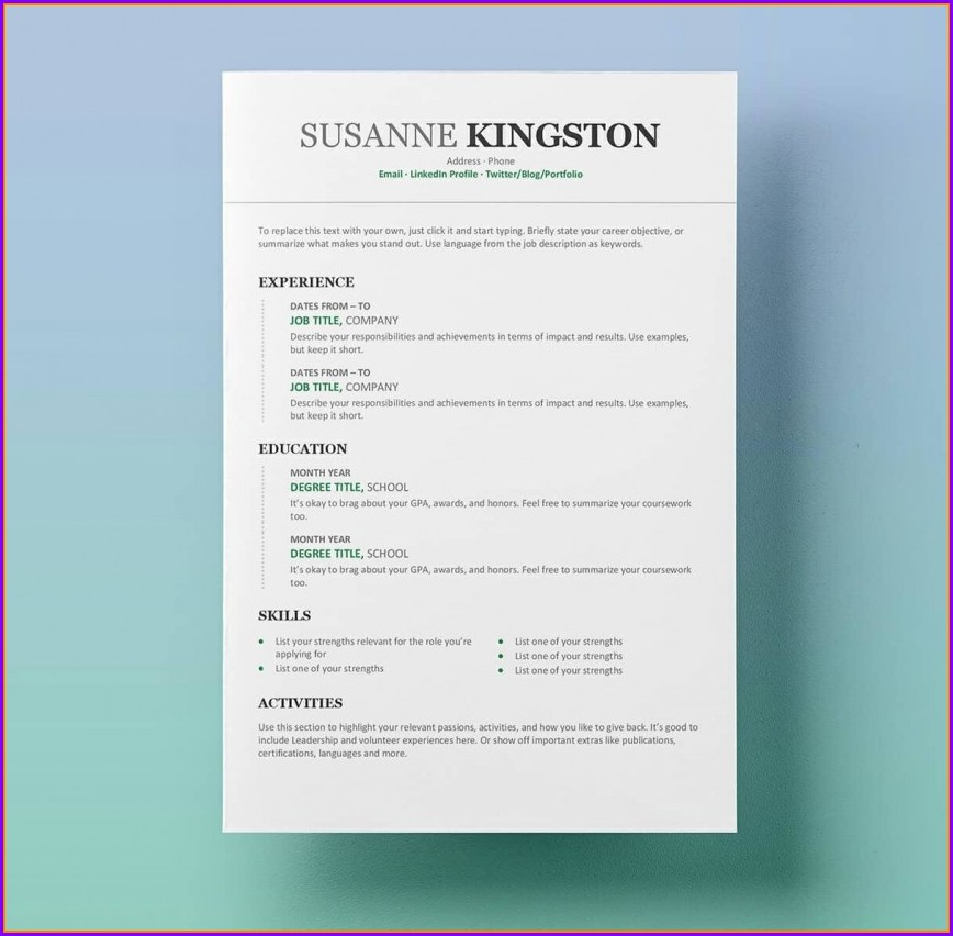 Professional Resume Microsoft Word Free Resume Templates 2019