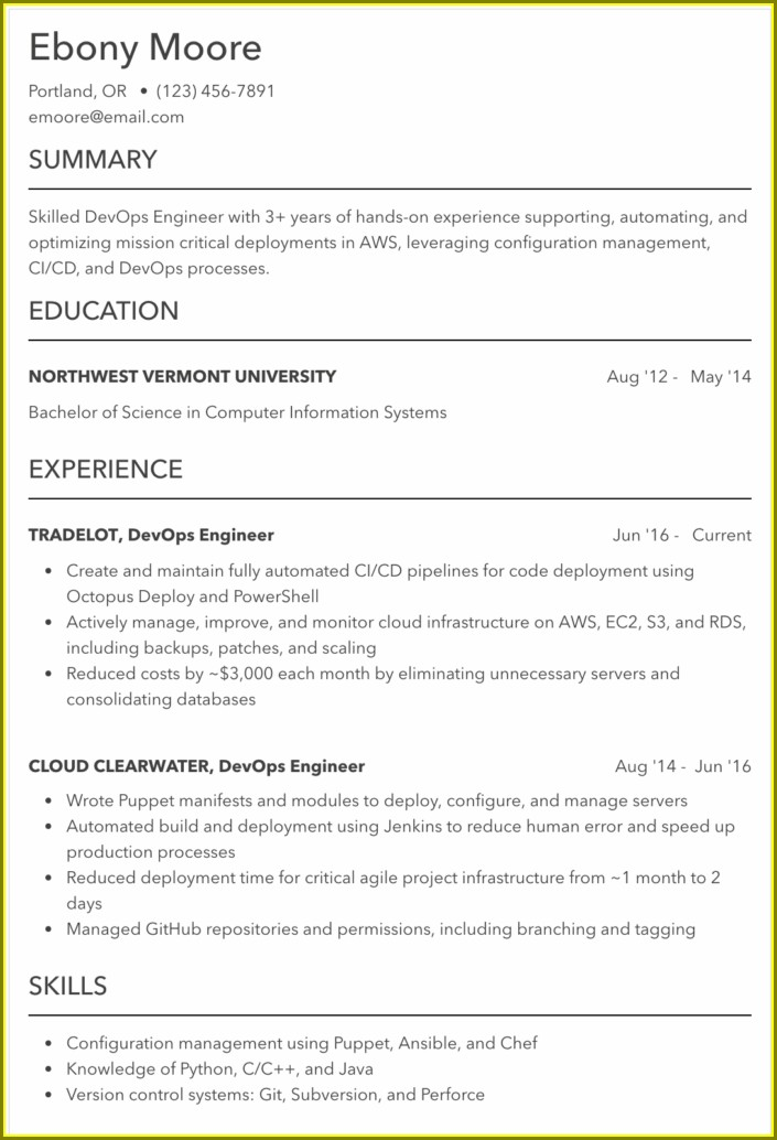 Resume Examples 2019 For Professionals