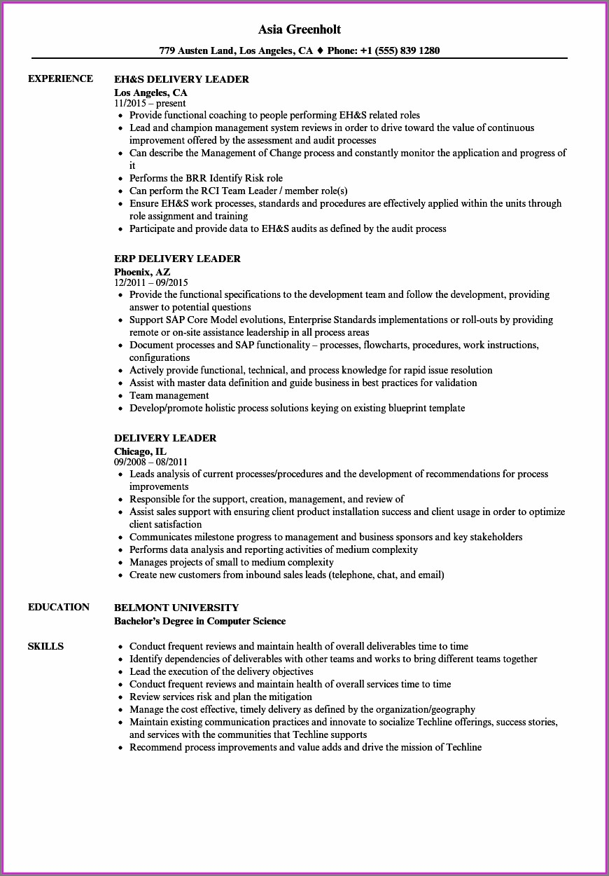 Resume Samples For Leadership Roles