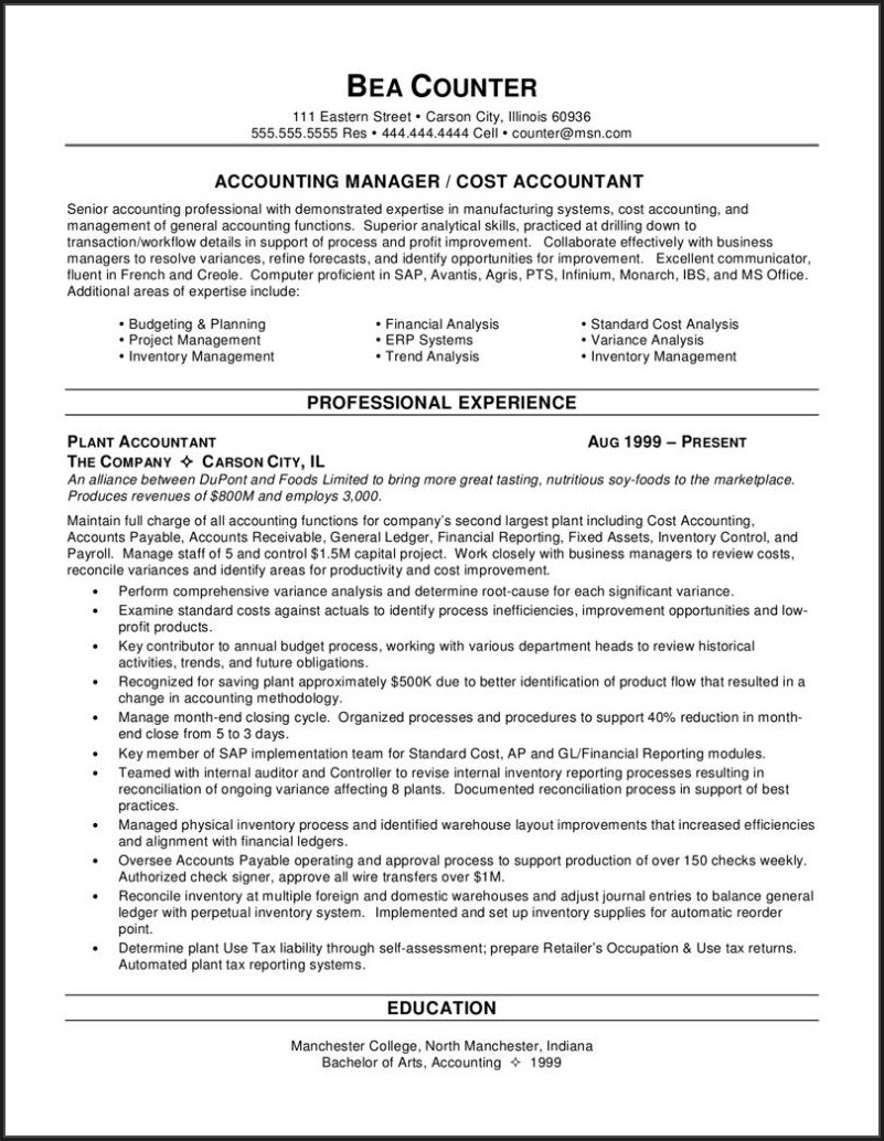Sample Resume For Professional Accountant