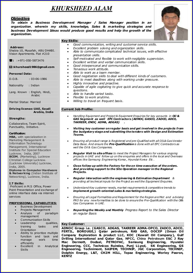 Sample Resume For Sales Manager In India