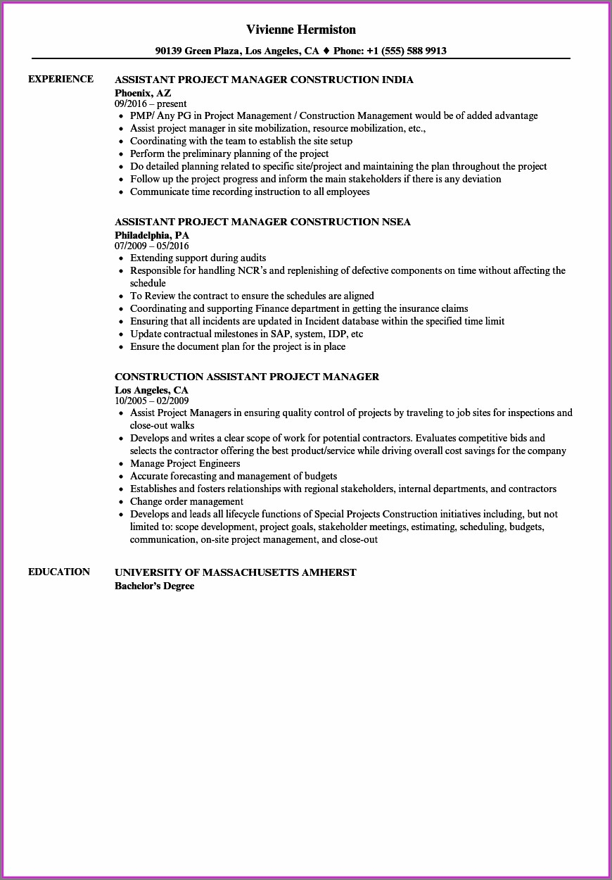 Sample Resumes For Construction Project Managers