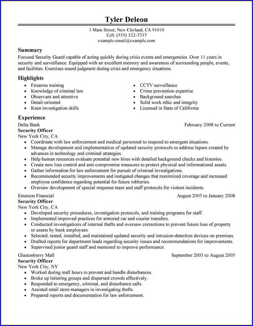 Security Officer Resume Format In India
