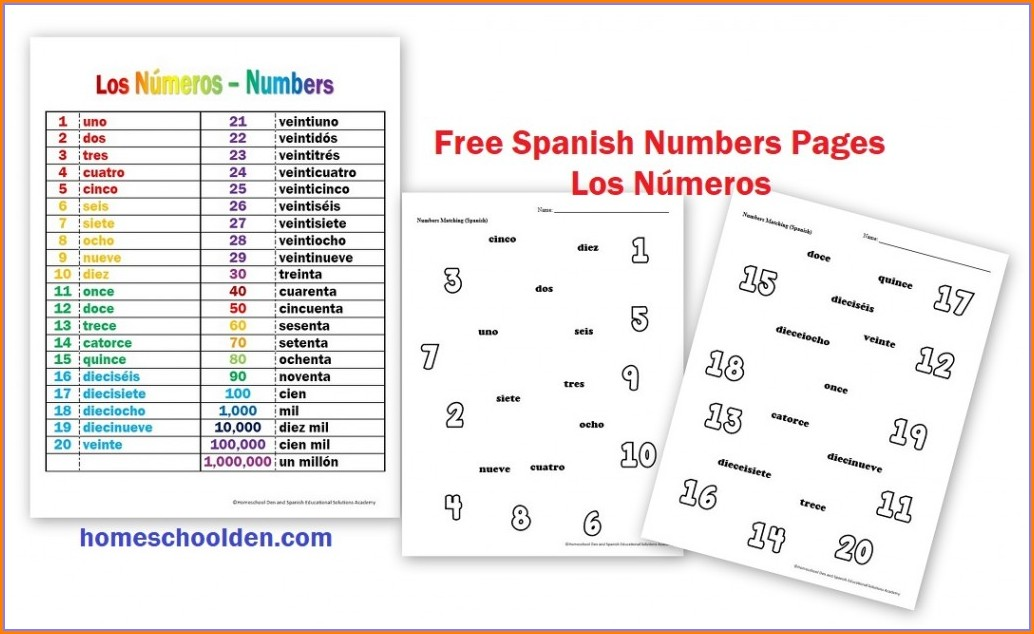 Elementary Spanish Numbers Worksheets