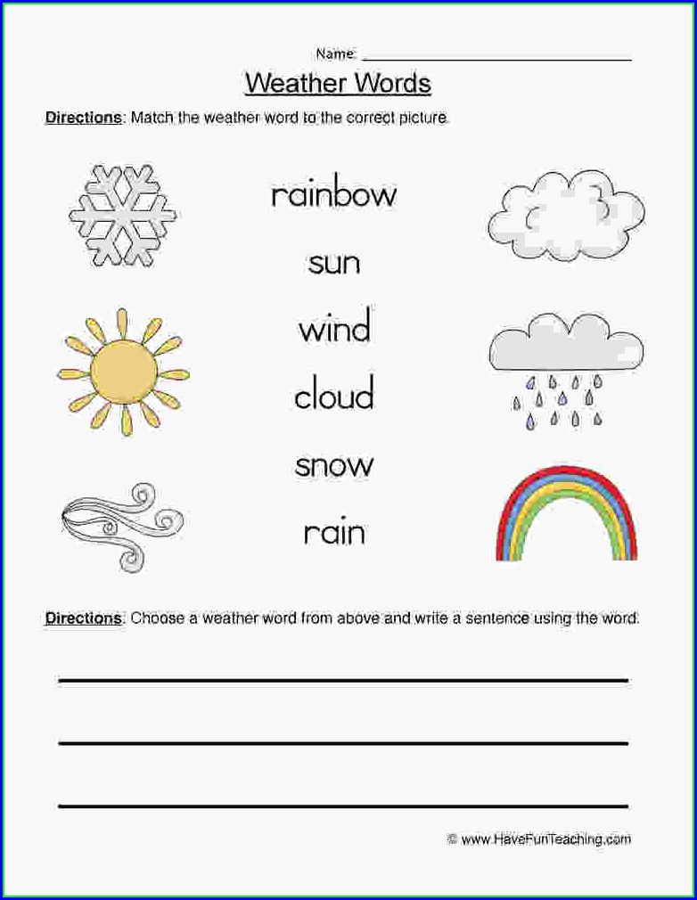 First Grade Science Worksheet Grade 1