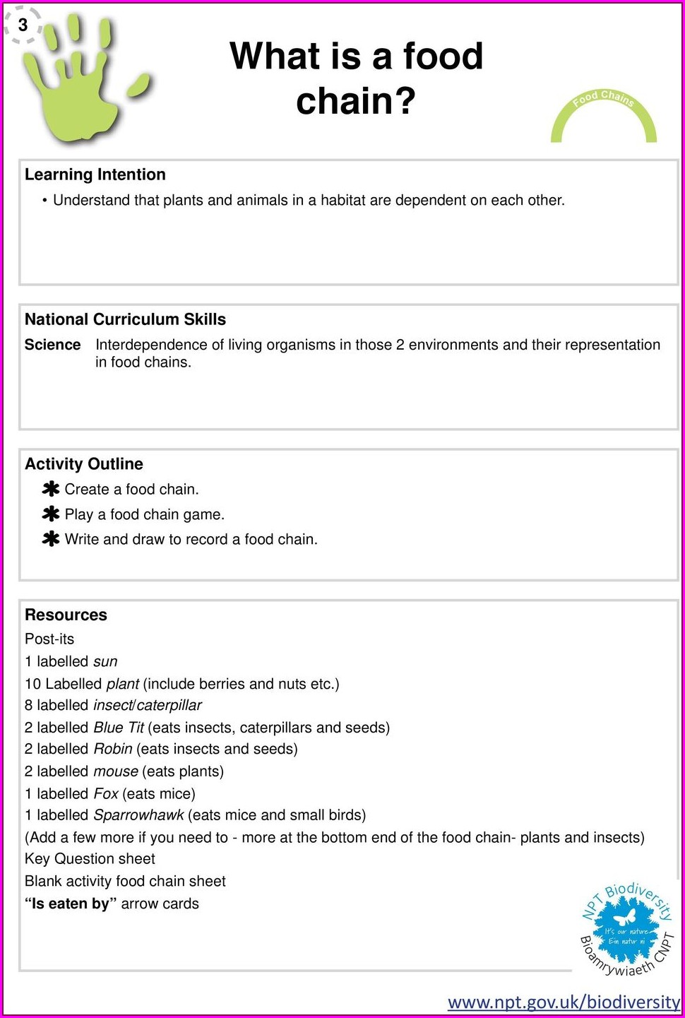 Middle School Food Web Worksheet Answers