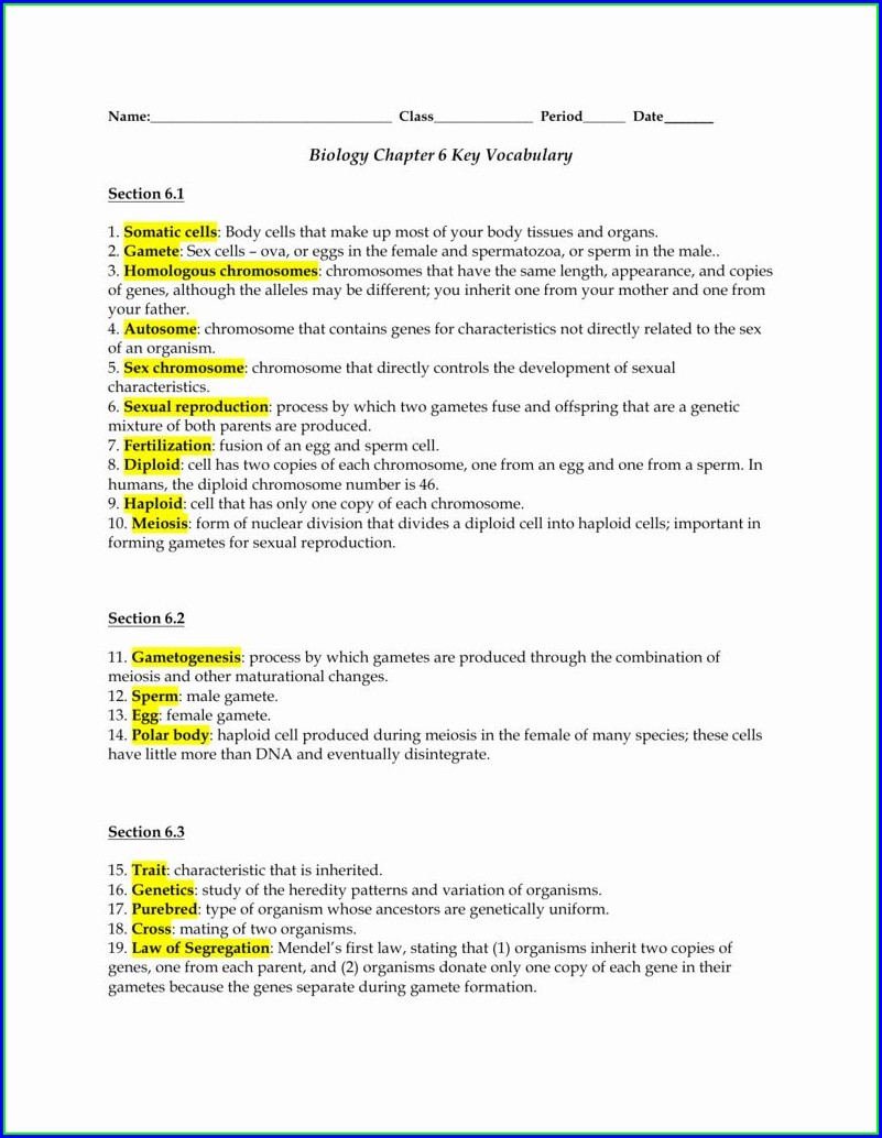 Persuasive Writing Vocabulary Worksheet