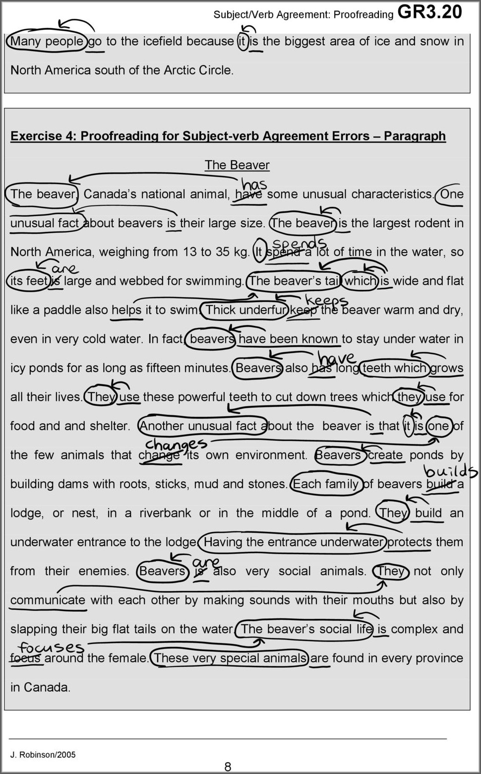 Subject Verb Agreement Exercises Paragraph Form