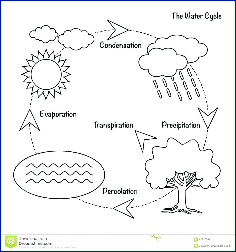 Water Cycle Diagram Blank Worksheet