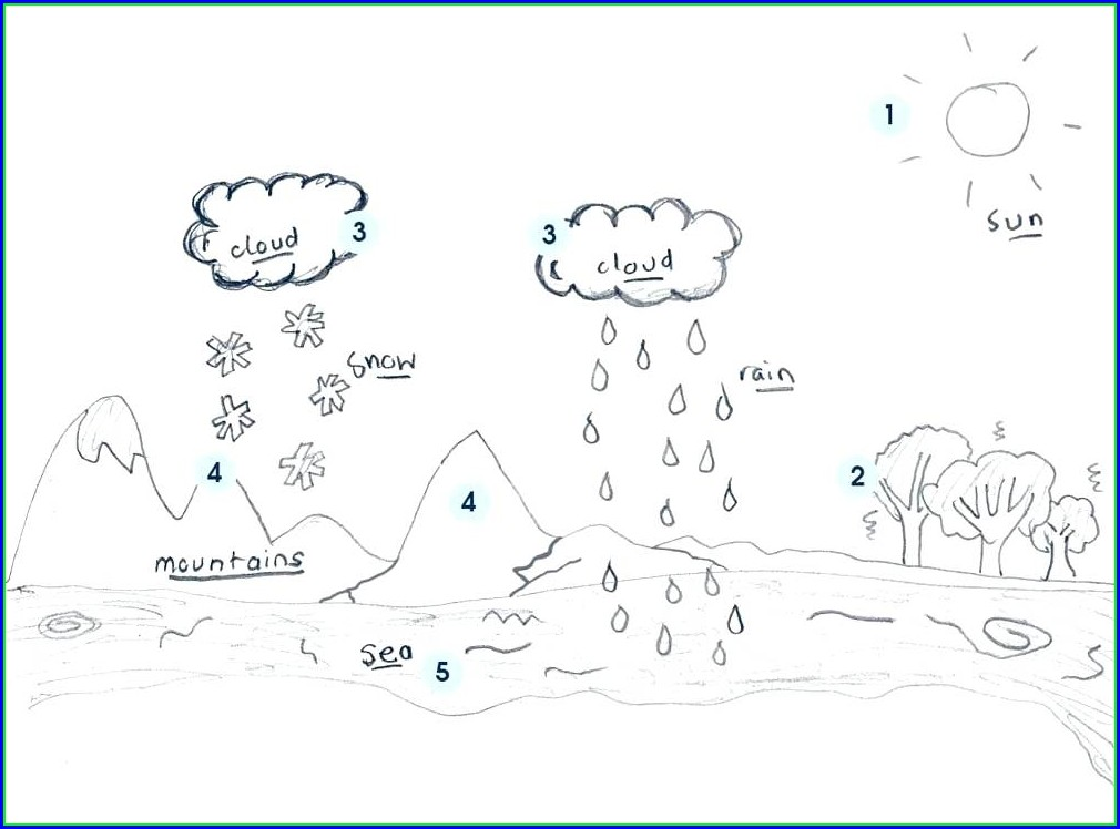 Water Cycle Worksheet Blank