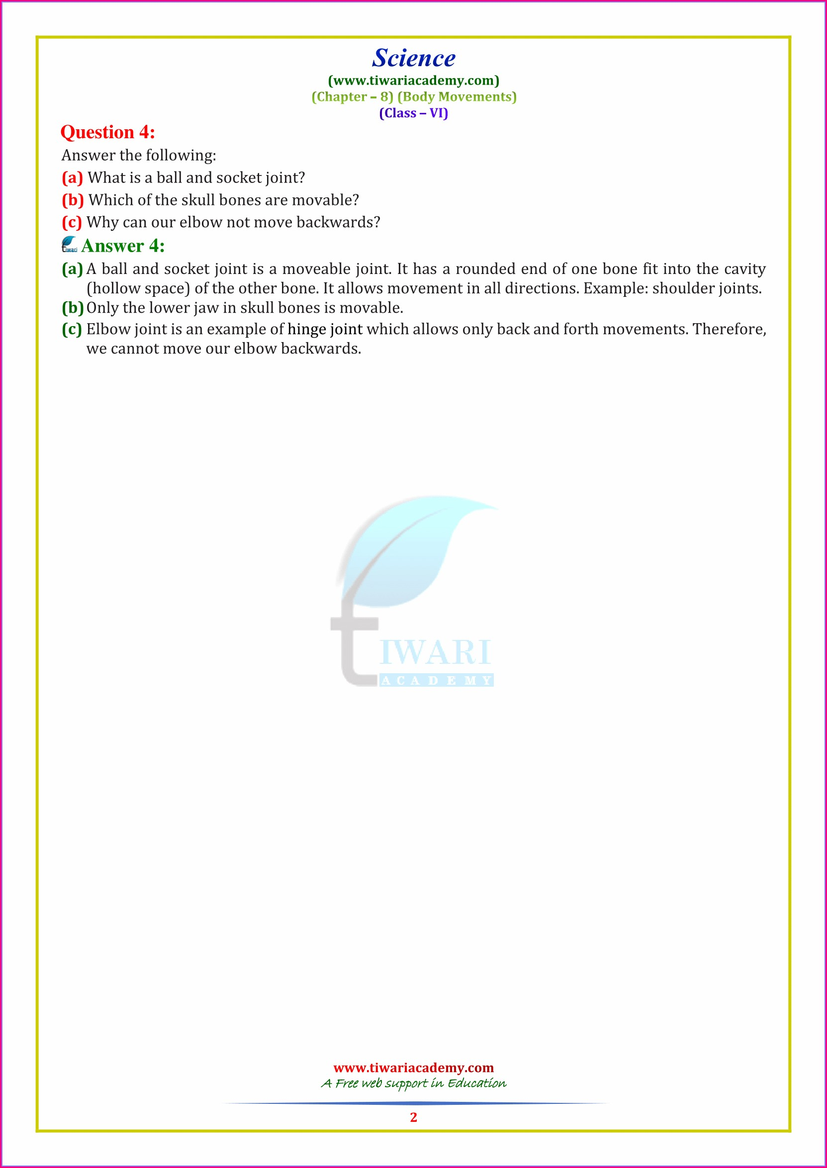Class 6 Science Chapter 8 Worksheet