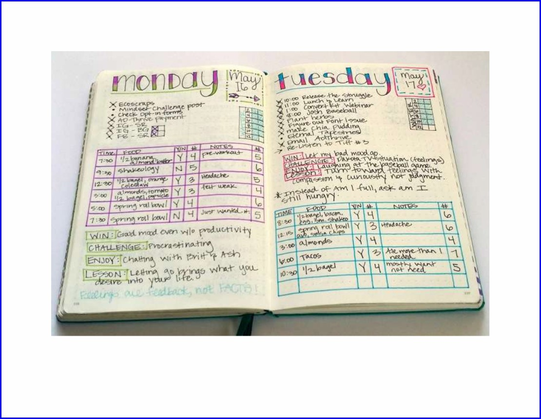 Fitness Log Book Example