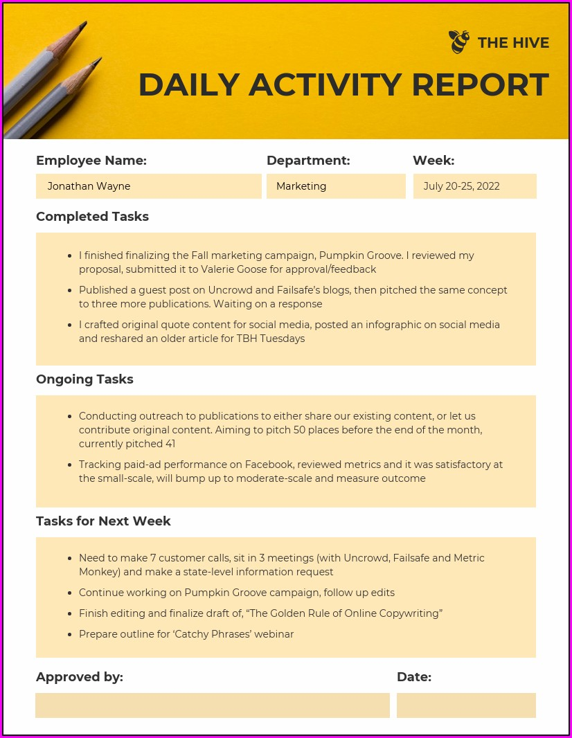 Daily Activity Report Format Sales And Marketing
