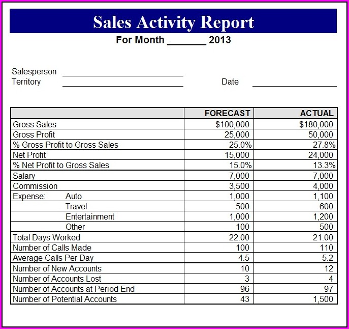 Daily Sales Activity Report Format Excel